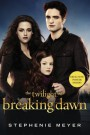 Breaking_Dawn_Edward_Bella_Nessie_book.jpg